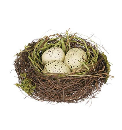 Most used tricks to Remove A Birds Nest In The Uk Near Me